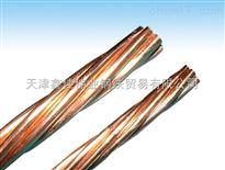 35mm平方裸铜绞线,60mm平方裸铜绞线价格