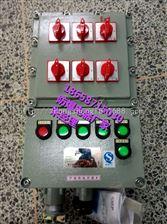 脉冲控制仪防爆配电箱 非标定做