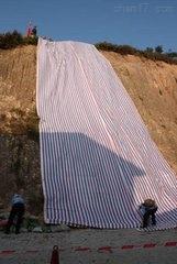 天津单膜彩条布