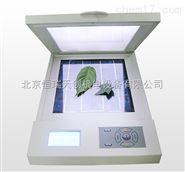 活体叶面积测定仪/激光叶面积仪价格