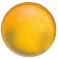 硫乙醇酸盐流体培养基(FT)