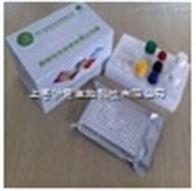 人白介素24(IL24)检测试剂盒