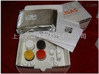 小鼠CD163分子(CD163)检测试剂盒
