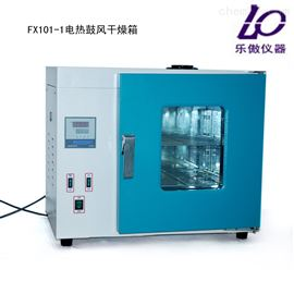 供应FX101-1电热鼓风干燥箱