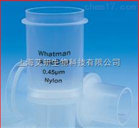 whatman autocup disposable filter funnel自动过滤漏斗 160