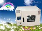 南京电热恒温鼓风干燥箱规格