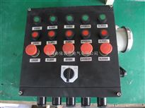 BZC8050两钮一表防爆防腐操作箱 立式防爆防腐黑色控制箱