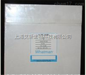WHATMAN 1001-917 460*570MM 1号滤纸