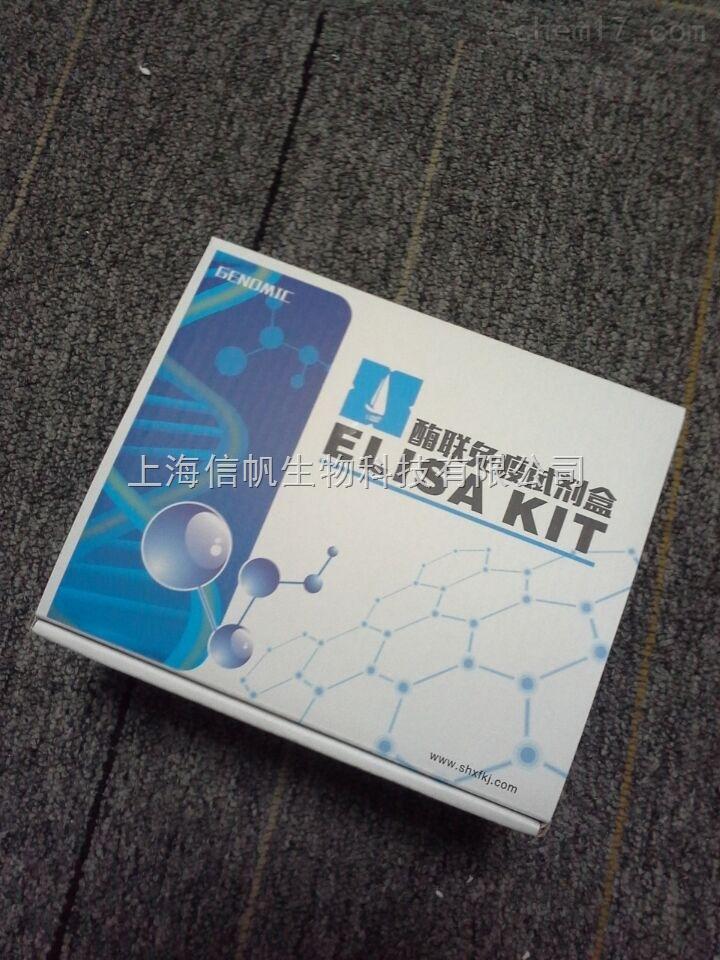 兔子IFN-gama elisa检测试剂盒