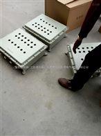 非标碳钢防爆箱体加工
