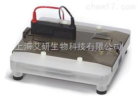 美国BIO-RAD全凝胶洗脱仪和小型全凝胶洗脱仪货号1651251