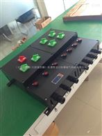 BXD8050防爆防腐動力配電箱.全塑防爆防腐動力配電箱