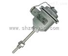 WZP-140防爆热电阻