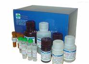 人单核细胞趋化蛋白1(MCP-1/CCL2/MCAF)ELISA试剂盒说明书|Kit价格
