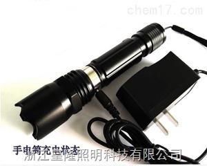 微型防爆电筒