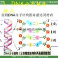 DNA甲基化修饰服务