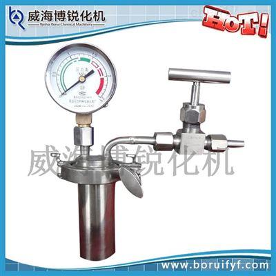 带压力表压力溶弹 水热合成反应釜