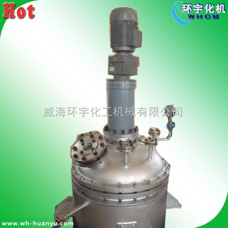 10L磁力搅拌反应釜