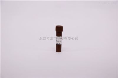 DAPI溶液(1mg/ml) 细胞检测试剂