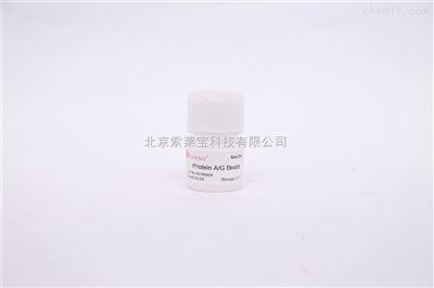 疏水層析填料 丁基-瓊脂糖凝膠 4B