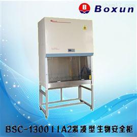 上海博迅BSC-1000IIA2生物安全柜