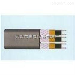 并联单相型电热带RDP2-J3-Q-220V-30