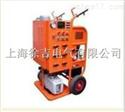 SF6气体抽真空充气装置 SG2004型