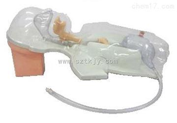 TKMX/A3小兒多功能透明鼻飼及洗胃模型