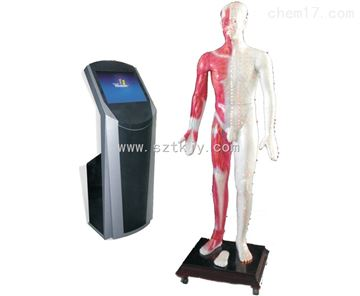 TKMX/ZJ-WST19M19寸多媒體人體針灸穴位交互數字平臺