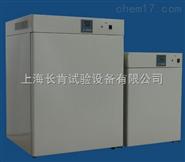 國產電熱恒溫培養箱設備