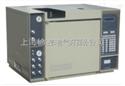 SC900气相色谱仪SC900气相色谱仪