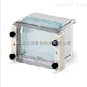 Mini-PROTEAN 3 多板凝胶灌胶器