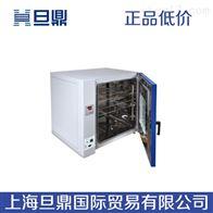 电热鼓风干燥箱DHG-9023A电热恒温干燥箱生产厂家