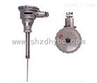 WZPK-248 隔爆热电阻