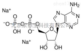 标准品二磷酸腺苷二钠