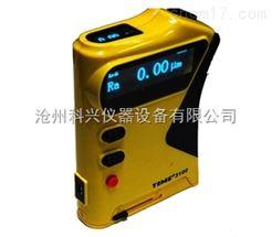 TIME3100型TIME3100型粗糙度仪