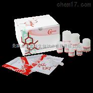 ECL高效化學發光試劑盒