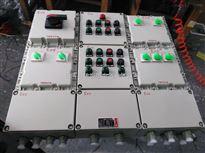 带证防爆动力配电箱施耐德元件带时间继电器动力箱