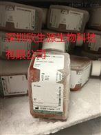 10437028哺乳动物细胞培养血清