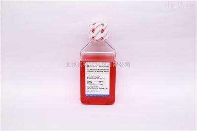DMEM(H)不含丙酮酸钠