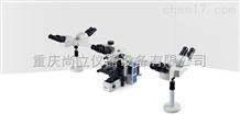 RX50DOM多人共览生物显微镜