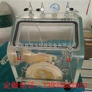 手套箱厌氧操作手套箱,厂家定制有机玻璃试验箱