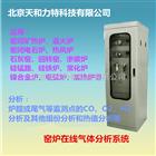 TK-3000密闭电石炉尾气气体分析系统
