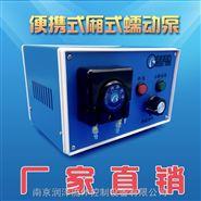 RZ1030箱式蠕动泵