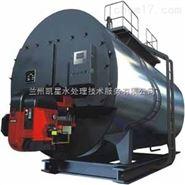 供甘肃水处理设备和兰州锅炉排污器