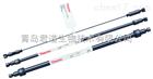 戴安 Dionex IonPac AS11-HC-4μm分析柱
