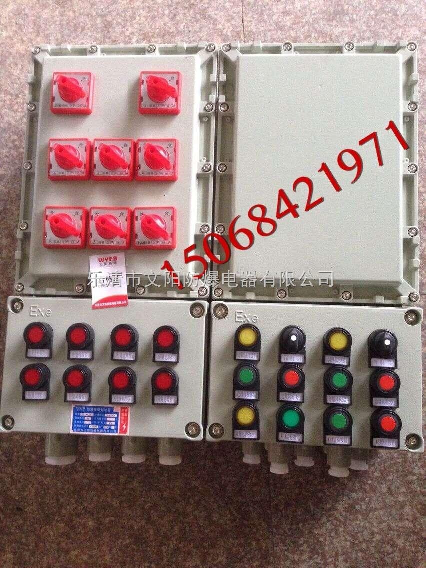 工厂专用防爆照明动力配电箱