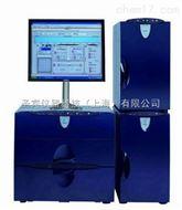 ICS5000入口毛细管离子色谱|戴安毛细管离子色谱