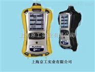 华瑞PGM-62X8系列检测仪