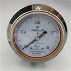 不锈钢压力表0-25MPaY-150A